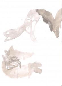 Immagine (355)