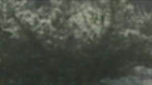 vlcsnap-2018-09-06-07h50m51s404