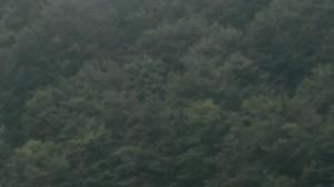 vlcsnap-2018-09-06-08h02m48s810